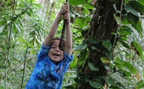Tarzan swinging in forest Road to hana kids